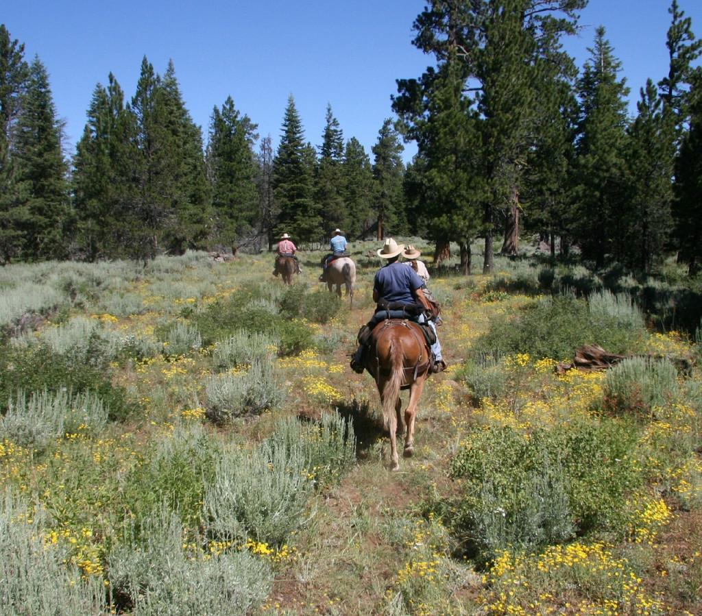 Colorado Camping Destinations